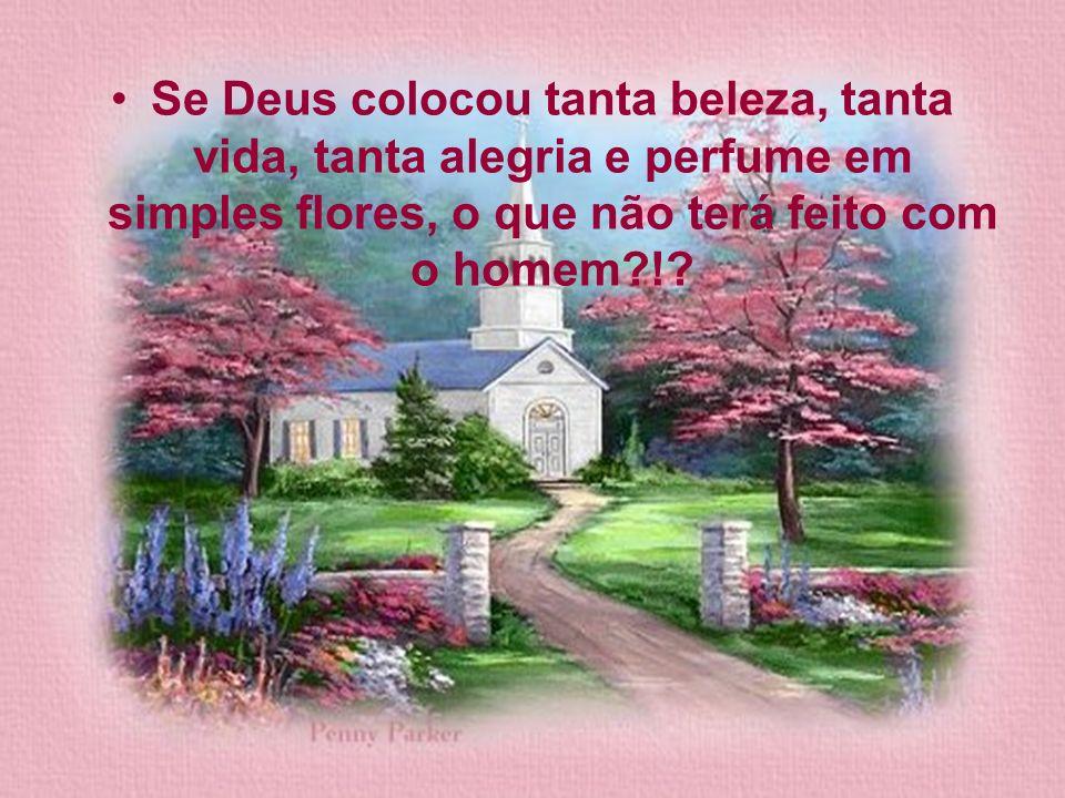 Se Deus colocou tanta beleza, tanta vida, tanta alegria e perfume em simples flores, o que não terá feito com o homem?!?