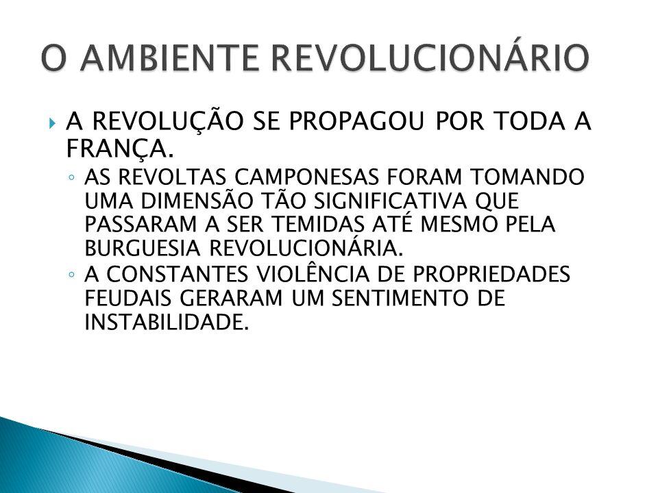 A REVOLUÇÃO SE PROPAGOU POR TODA A FRANÇA.