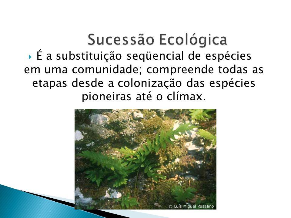 É a substituição seqüencial de espécies em uma comunidade; compreende todas as etapas desde a colonização das espécies pioneiras até o clímax.