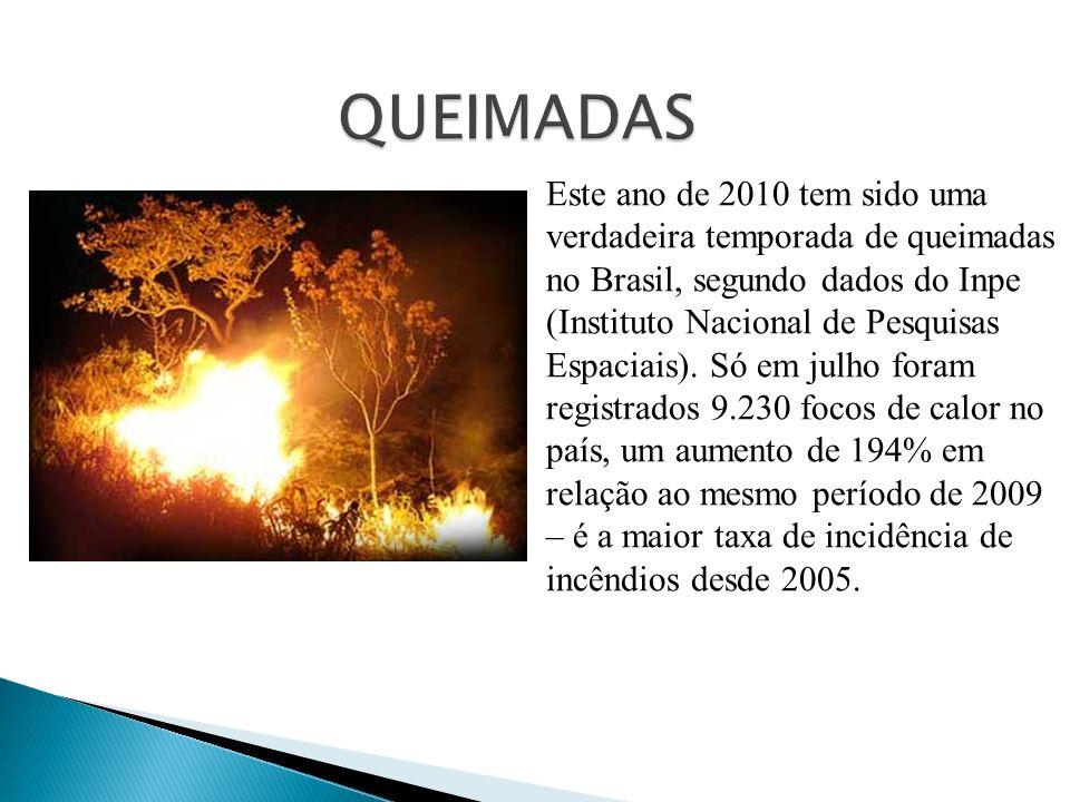 Este ano de 2010 tem sido uma verdadeira temporada de queimadas no Brasil, segundo dados do Inpe (Instituto Nacional de Pesquisas Espaciais). Só em ju