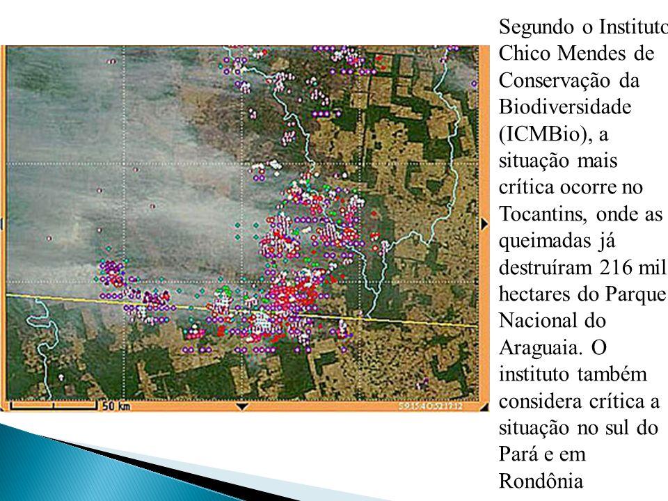 Segundo o Instituto Chico Mendes de Conservação da Biodiversidade (ICMBio), a situação mais crítica ocorre no Tocantins, onde as queimadas já destruír