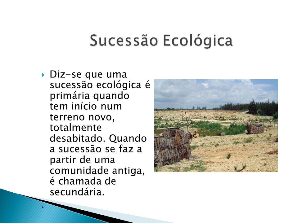 Diz-se que uma sucessão ecológica é primária quando tem início num terreno novo, totalmente desabitado. Quando a sucessão se faz a partir de uma comun