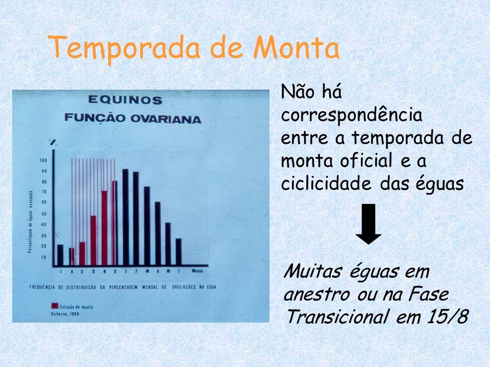 Temporada de Monta Não há correspondência entre a temporada de monta oficial e a ciclicidade das éguas Muitas éguas em anestro ou na Fase Transicional