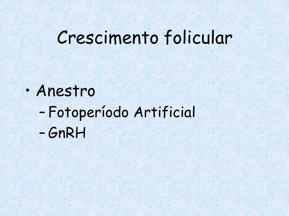 Crescimento folicular Anestro –Fotoperíodo Artificial –GnRH