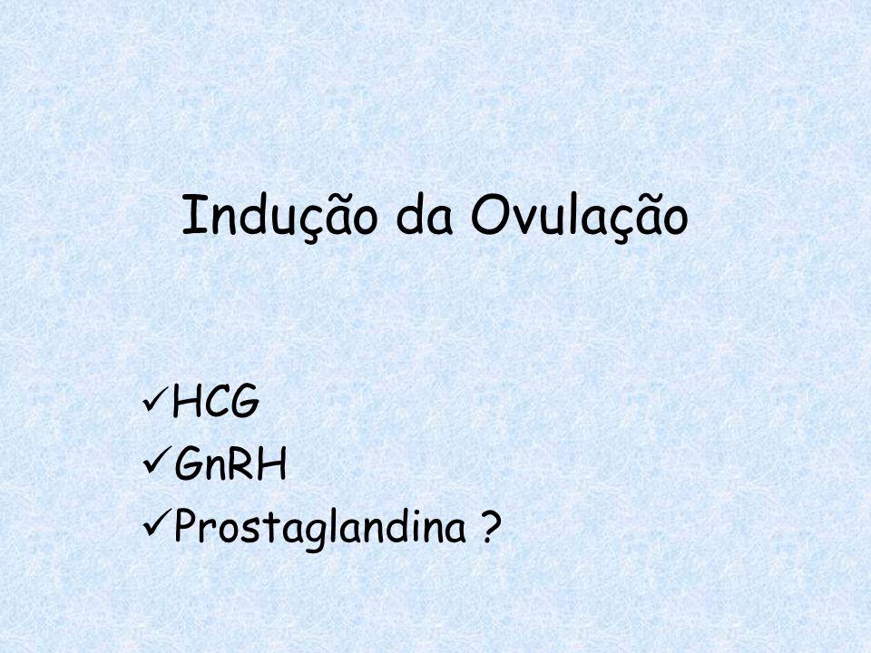 HCG GnRH Prostaglandina ?