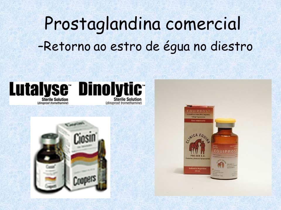 Prostaglandina comercial –Retorno ao estro de égua no diestro