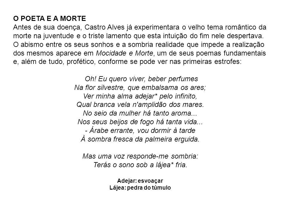 SOUSÂNDRADE (1833-1902) Vida: Joaquim de Sousa Andrade nasceu em Alcântara, Maranhão.