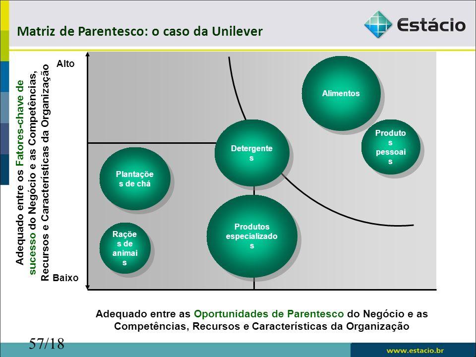 57/18 Adequado entre os Fatores-chave de sucesso do Negócio e as Competências, Recursos e Características da Organização Adequado entre as Oportunidad