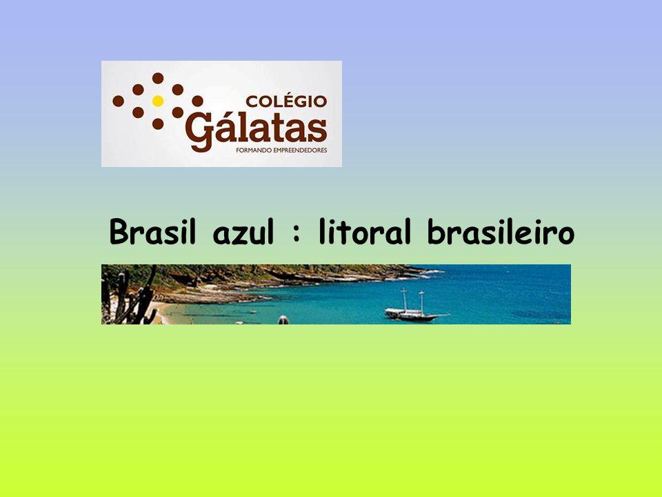Brasil azul : litoral brasileiro