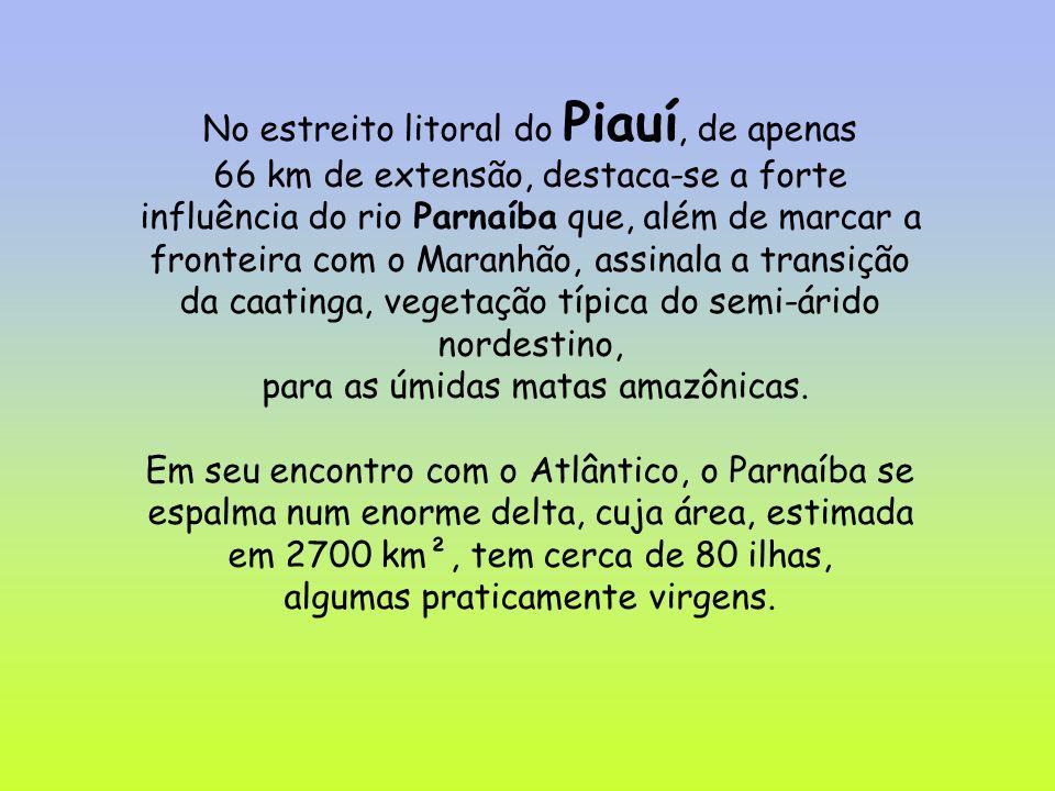No estreito litoral do Piauí, de apenas 66 km de extensão, destaca-se a forte influência do rio Parnaíba que, além de marcar a fronteira com o Maranhão, assinala a transição da caatinga, vegetação típica do semi-árido nordestino, para as úmidas matas amazônicas.