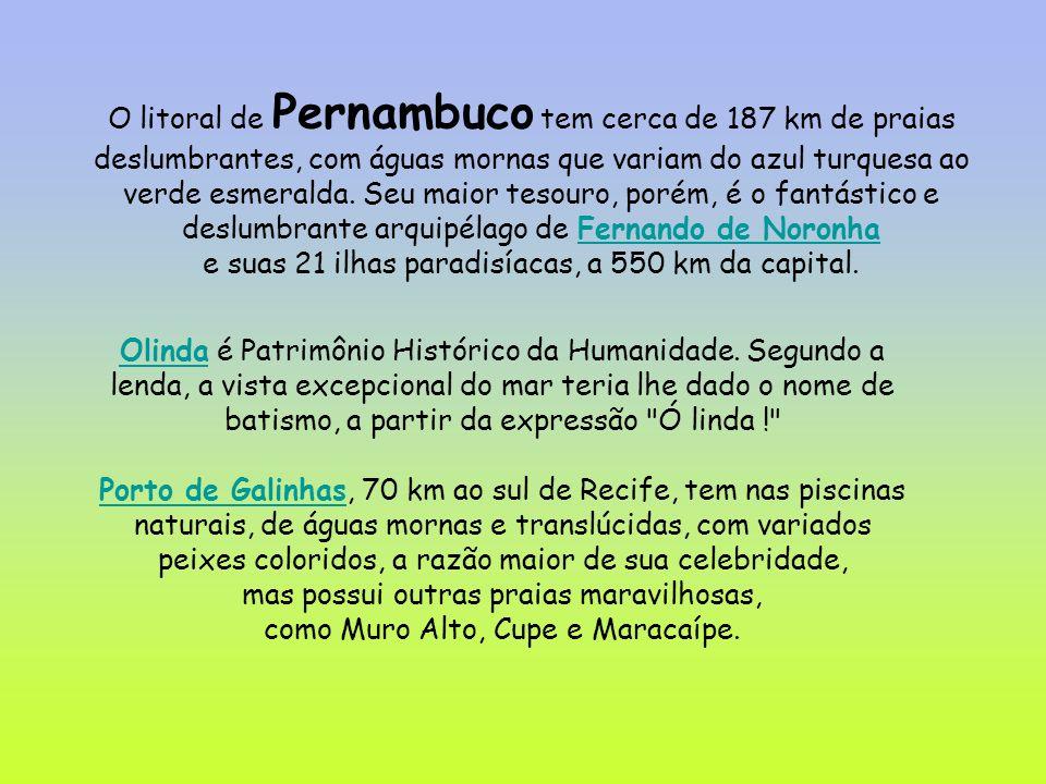 O litoral de Pernambuco tem cerca de 187 km de praias deslumbrantes, com águas mornas que variam do azul turquesa ao verde esmeralda.