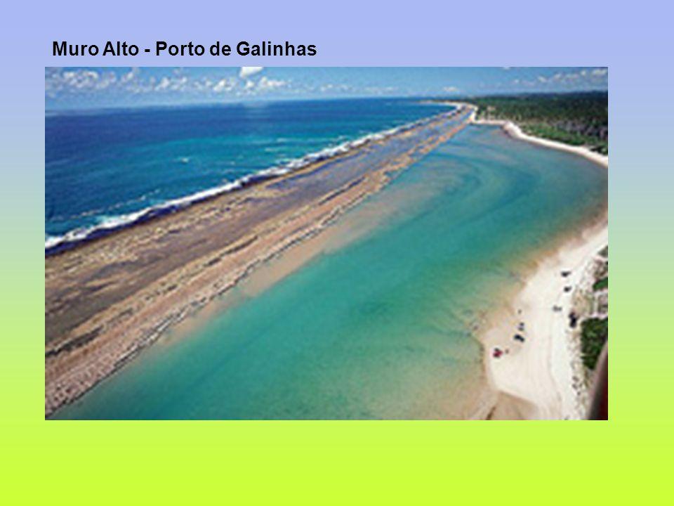 Muro Alto - Porto de Galinhas