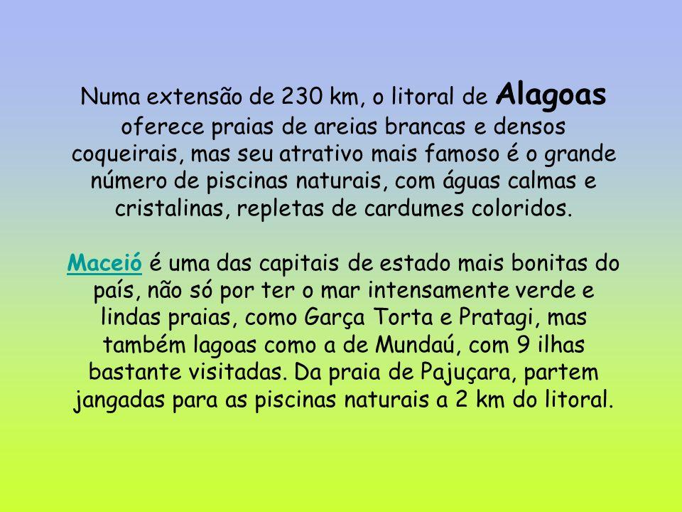 Numa extensão de 230 km, o litoral de Alagoas oferece praias de areias brancas e densos coqueirais, mas seu atrativo mais famoso é o grande número de