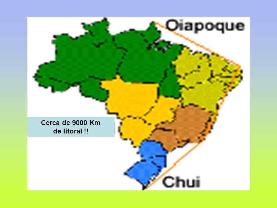 Com cerca de 98% de sua cobertura vegetal original praticamente intactos, o Amapá pode ser considerado um verdadeiro santuário ecológico.