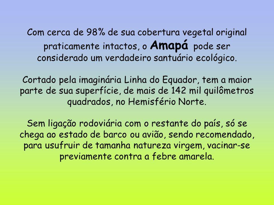 Com cerca de 98% de sua cobertura vegetal original praticamente intactos, o Amapá pode ser considerado um verdadeiro santuário ecológico. Cortado pela