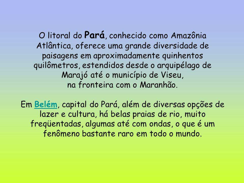 Belém,capital do Pará,preserva construções históricas como o mercado de ver o peso