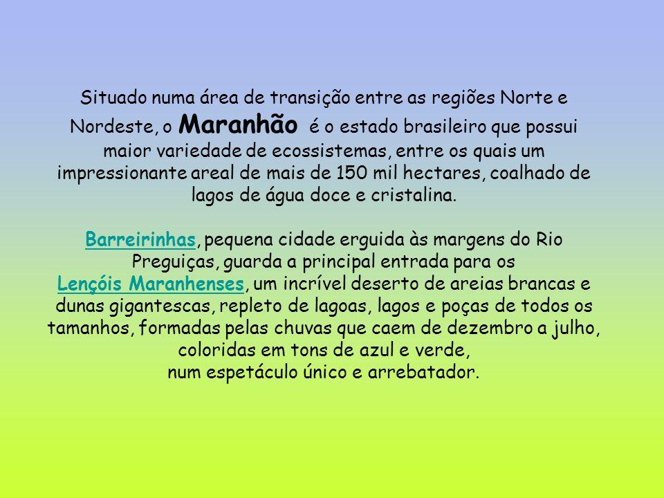 Situado numa área de transição entre as regiões Norte e Nordeste, o Maranhão é o estado brasileiro que possui maior variedade de ecossistemas, entre os quais um impressionante areal de mais de 150 mil hectares, coalhado de lagos de água doce e cristalina.