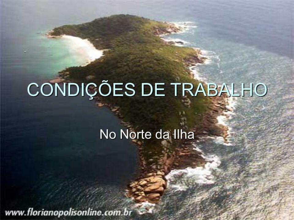 CONDIÇÕES DE TRABALHO No Norte da Ilha