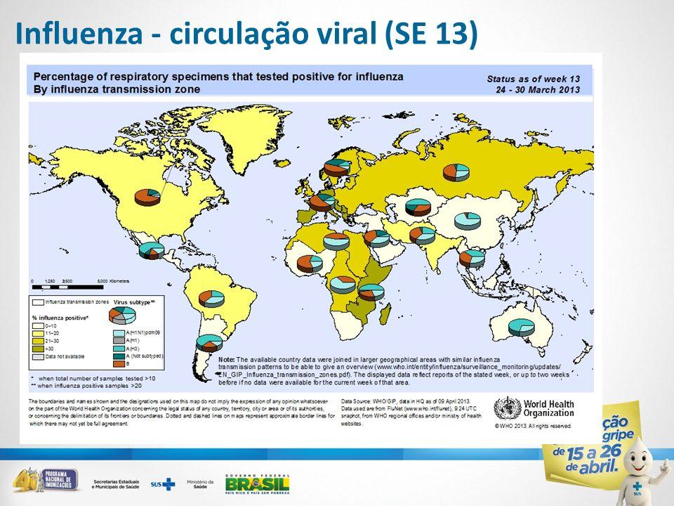 Influenza - circulação viral (SE 13)