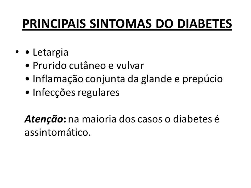 PRINCIPAIS SINTOMAS DO DIABETES Letargia Prurido cutâneo e vulvar Inflamação conjunta da glande e prepúcio Infecções regulares Atenção: na maioria dos