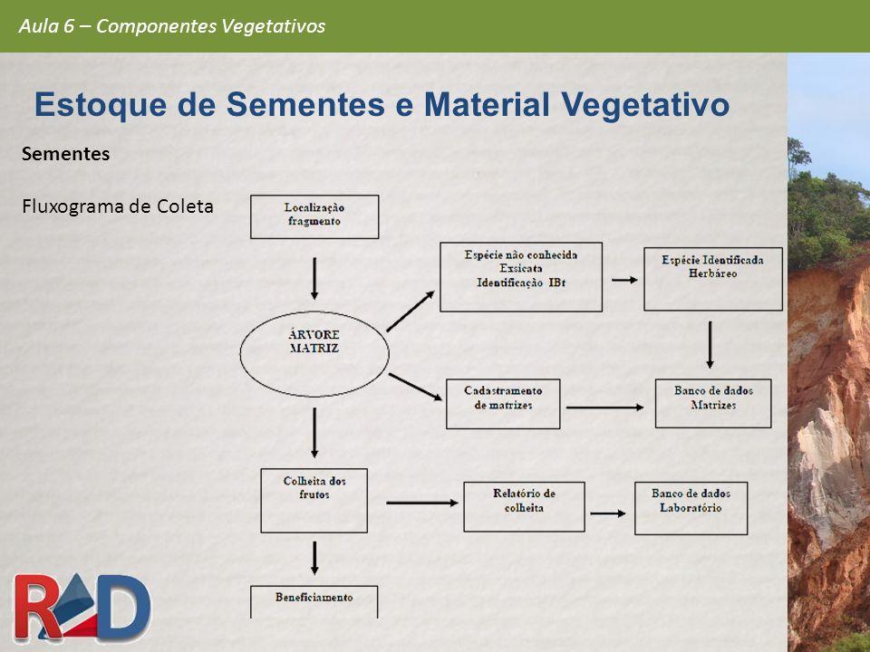 Sementes Fluxograma de Coleta Aula 6 – Componentes Vegetativos Estoque de Sementes e Material Vegetativo