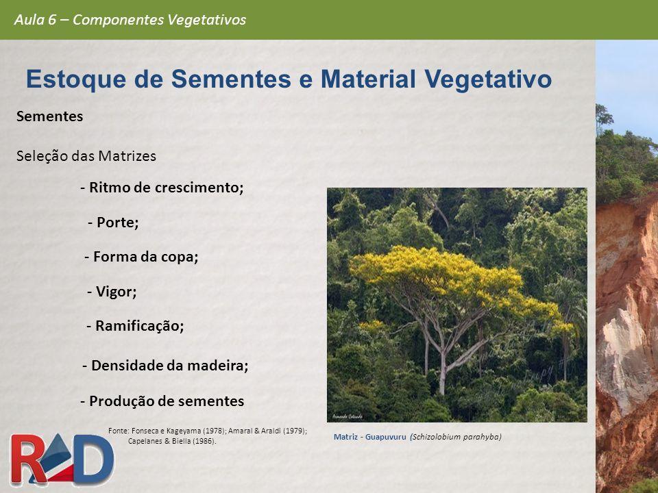 Sementes Seleção das Matrizes Aula 6 – Componentes Vegetativos Estoque de Sementes e Material Vegetativo - Porte; - Ritmo de crescimento; - Ramificaçã