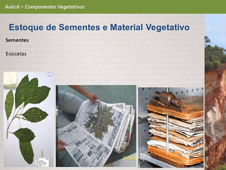 Sementes Exsicatas Aula 6 – Componentes Vegetativos Estoque de Sementes e Material Vegetativo