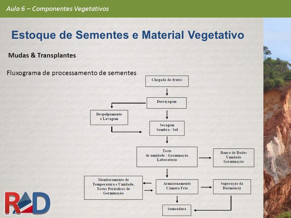 Mudas & Transplantes Fluxograma de processamento de sementes Aula 6 – Componentes Vegetativos Estoque de Sementes e Material Vegetativo