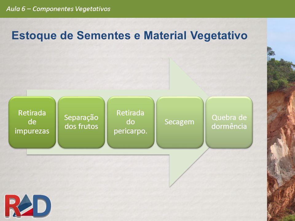 Retirada de impurezas Separação dos frutos Retirada do pericarpo. Secagem Quebra de dormência Aula 6 – Componentes Vegetativos Estoque de Sementes e M