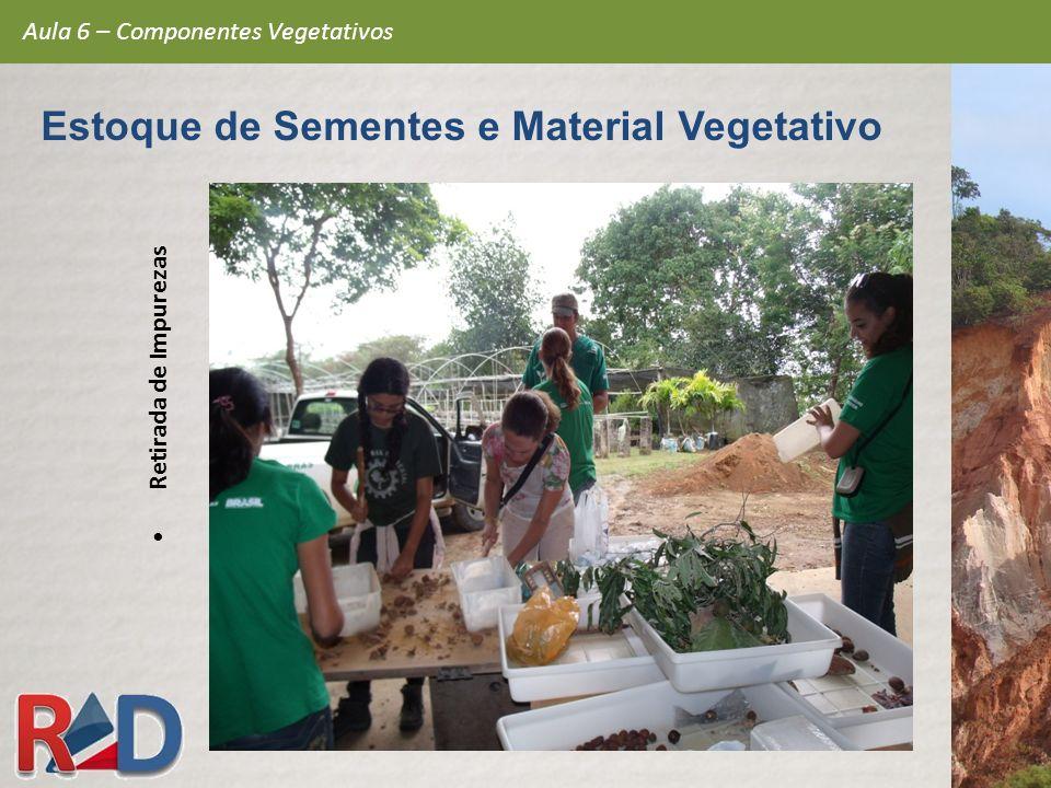 Retirada de Impurezas Aula 6 – Componentes Vegetativos Estoque de Sementes e Material Vegetativo