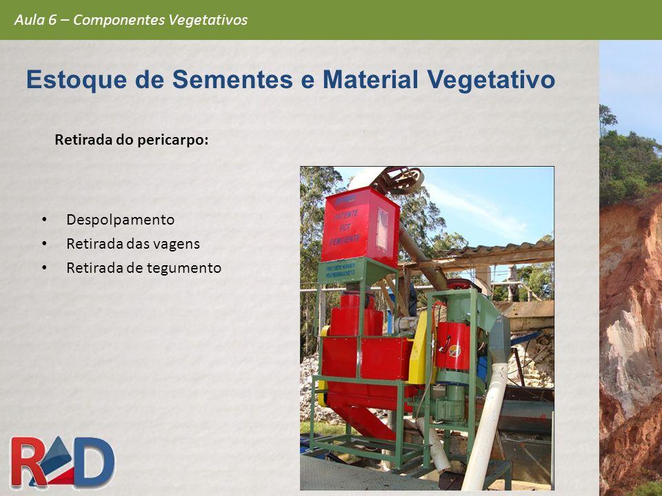 Retirada do pericarpo: Despolpamento Retirada das vagens Retirada de tegumento Aula 6 – Componentes Vegetativos Estoque de Sementes e Material Vegetat