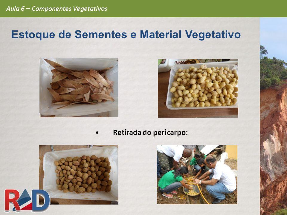 Retirada do pericarpo: Aula 6 – Componentes Vegetativos Estoque de Sementes e Material Vegetativo