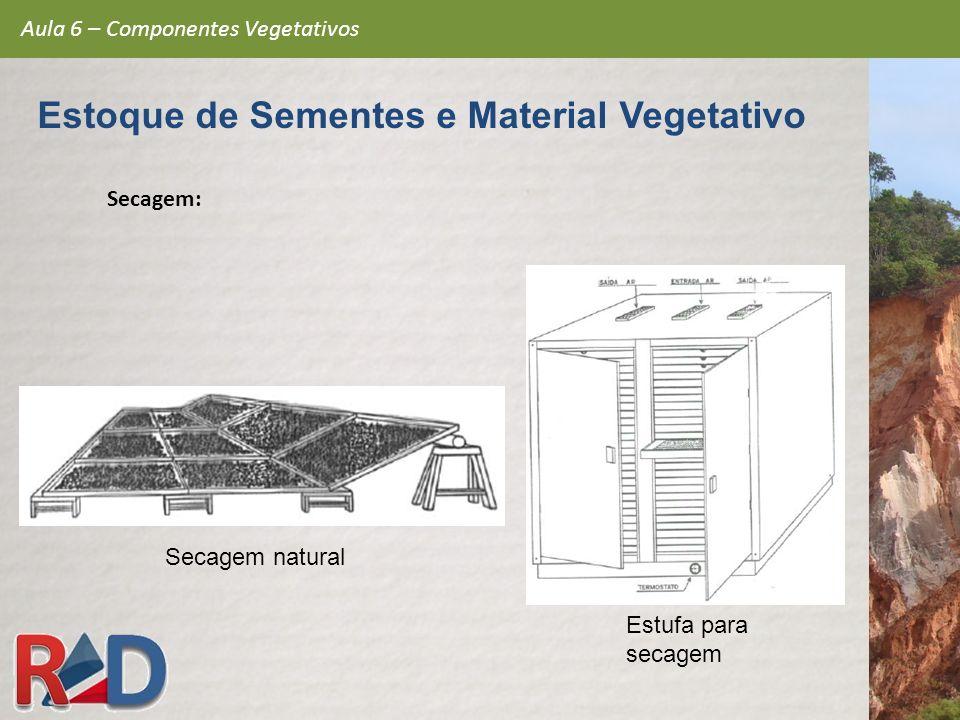 Secagem: Estufa para secagem Secagem natural Aula 6 – Componentes Vegetativos Estoque de Sementes e Material Vegetativo