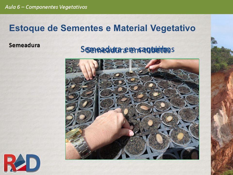 Semeadura em canteiro Semeadura em saquinhos Semeadura em tubetes Semeadura Aula 6 – Componentes Vegetativos Estoque de Sementes e Material Vegetativo