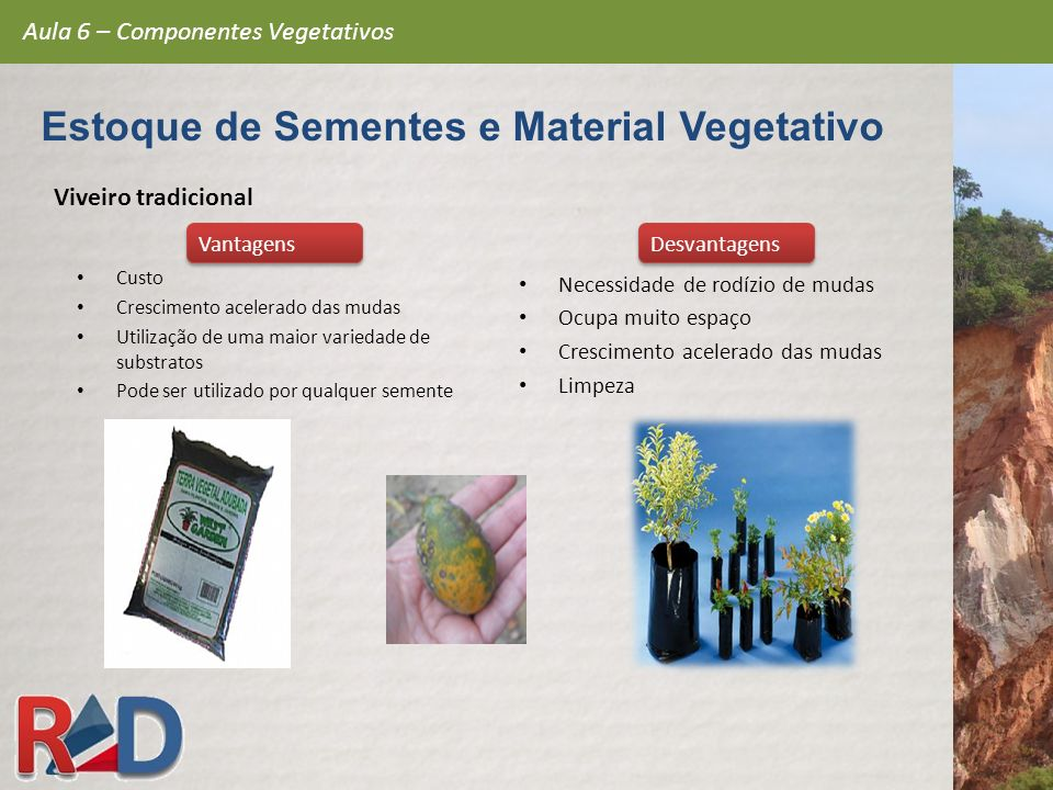 Viveiro tradicional Custo Crescimento acelerado das mudas Utilização de uma maior variedade de substratos Pode ser utilizado por qualquer semente Nece