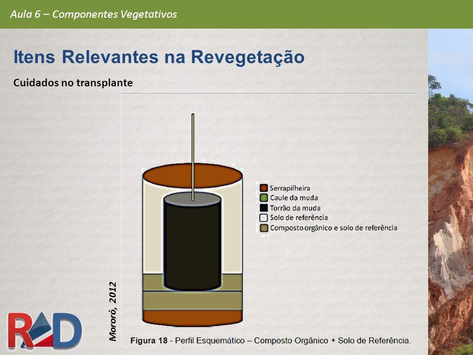 Cuidados no transplante Aula 6 – Componentes Vegetativos Itens Relevantes na Revegetação Mororó, 2012