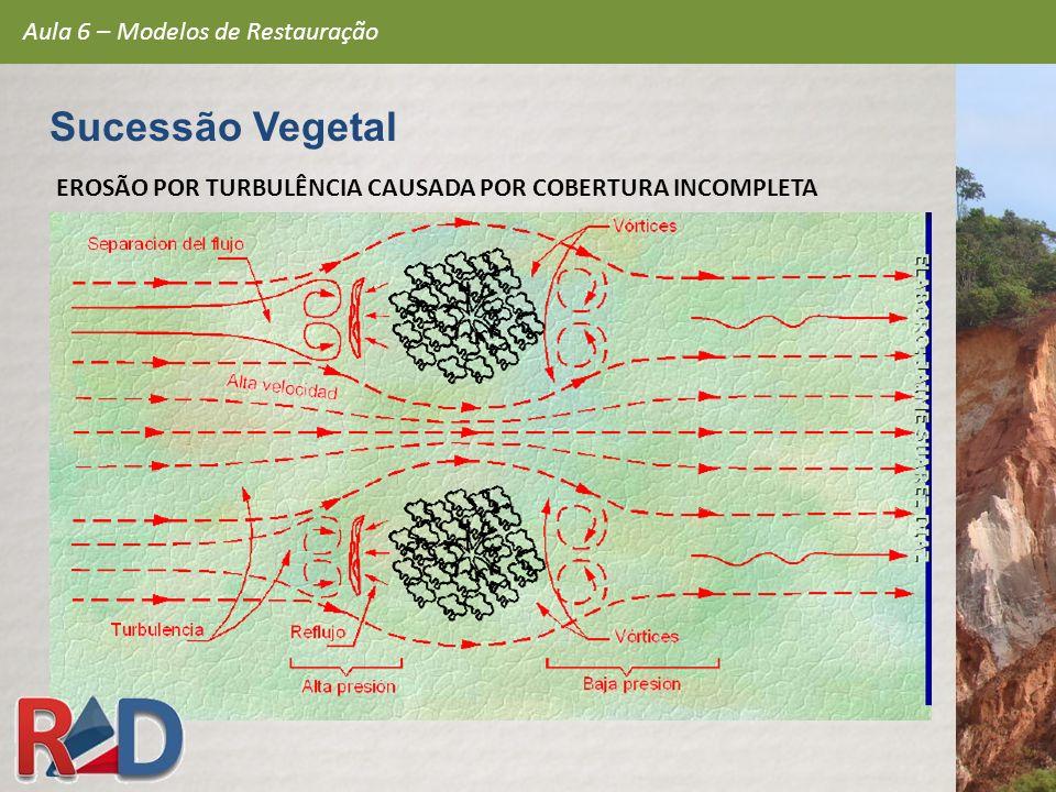 EROSÃO POR TURBULÊNCIA CAUSADA POR COBERTURA INCOMPLETA Aula 6 – Modelos de Restauração Sucessão Vegetal