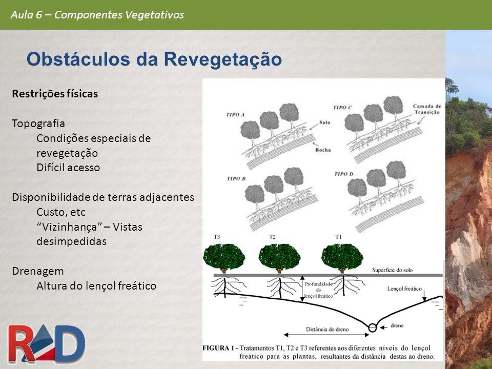 Restrições físicas Topografia Condições especiais de revegetação Difícil acesso Disponibilidade de terras adjacentes Custo, etc Vizinhança – Vistas de