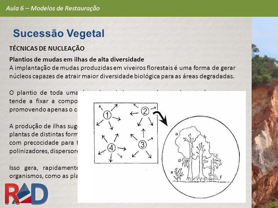 TÉCNICAS DE NUCLEAÇÃO Plantios de mudas em ilhas de alta diversidade A implantação de mudas produzidas em viveiros florestais é uma forma de gerar núc
