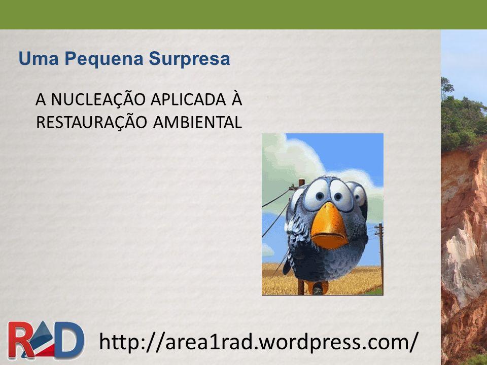 A NUCLEAÇÃO APLICADA À RESTAURAÇÃO AMBIENTAL http://area1rad.wordpress.com/ Uma Pequena Surpresa