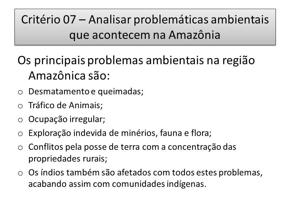 Critério 07 – Analisar problemáticas ambientais que acontecem na Amazônia Os principais problemas ambientais na região Amazônica são: o Desmatamento e queimadas; o Tráfico de Animais; o Ocupação irregular; o Exploração indevida de minérios, fauna e flora; o Conflitos pela posse de terra com a concentração das propriedades rurais; o Os índios também são afetados com todos estes problemas, acabando assim com comunidades indígenas.