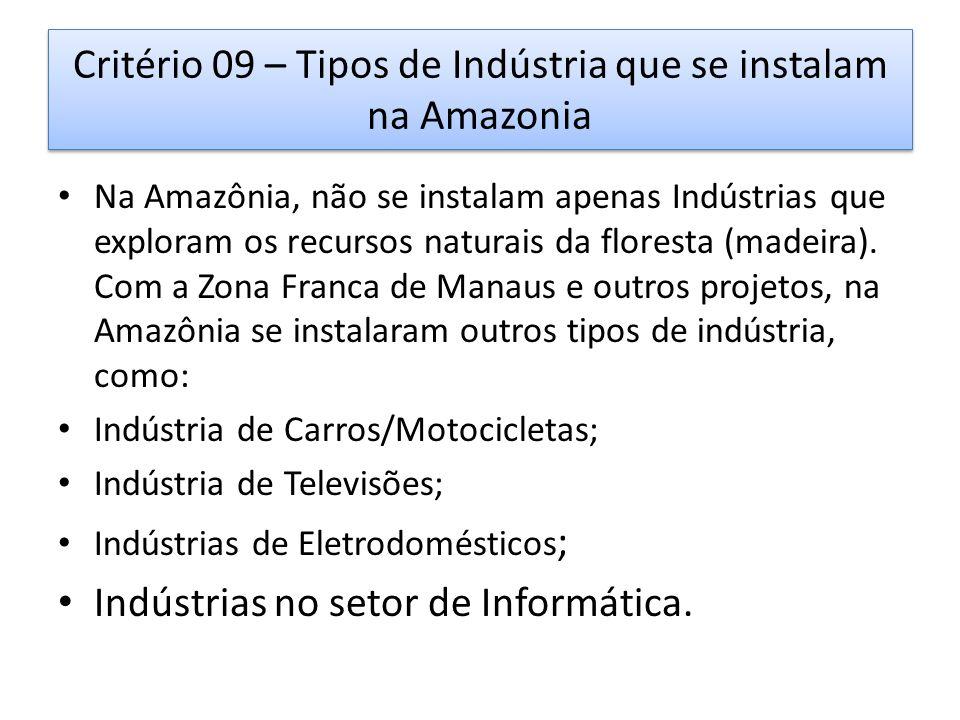 Critério 09 – Tipos de Indústria que se instalam na Amazonia Na Amazônia, não se instalam apenas Indústrias que exploram os recursos naturais da floresta (madeira).