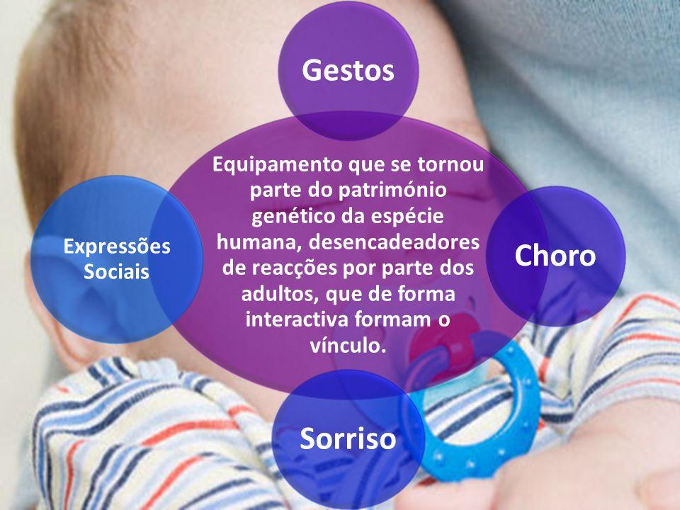 Equipamento que se tornou parte do património genético da espécie humana, desencadeadores de reacções por parte dos adultos, que de forma interactiva