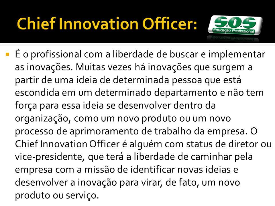 É o profissional com a liberdade de buscar e implementar as inovações.