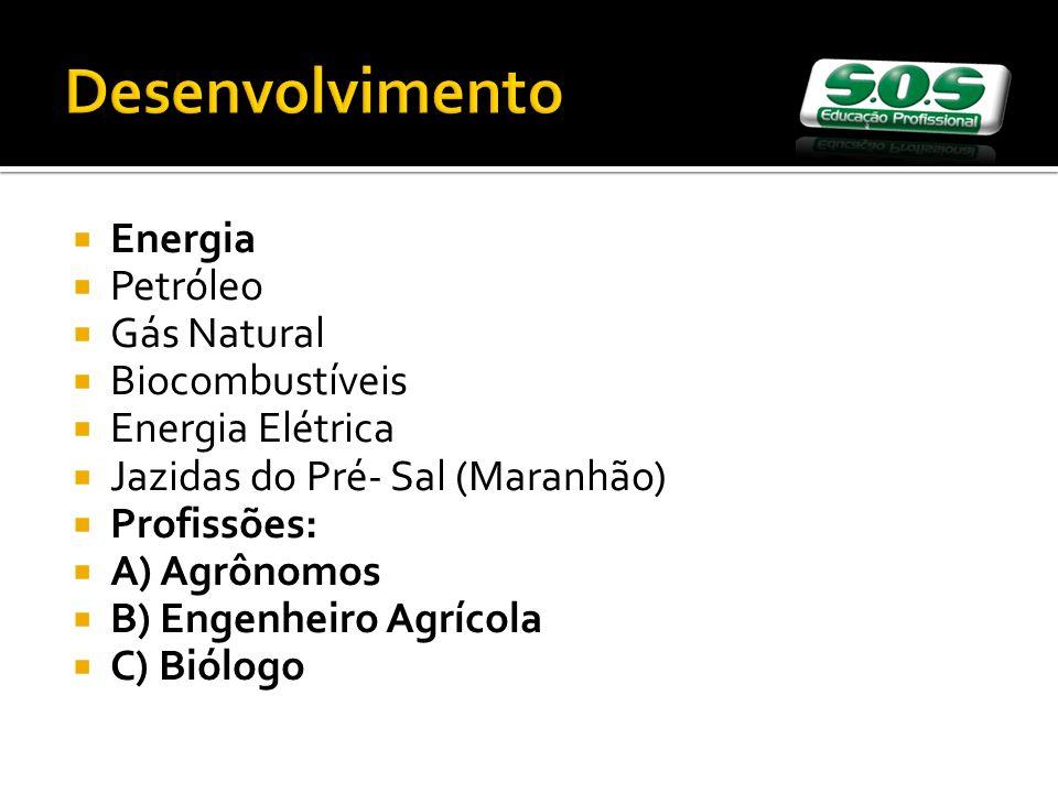 Energia Petróleo Gás Natural Biocombustíveis Energia Elétrica Jazidas do Pré- Sal (Maranhão) Profissões: A) Agrônomos B) Engenheiro Agrícola C) Biólogo