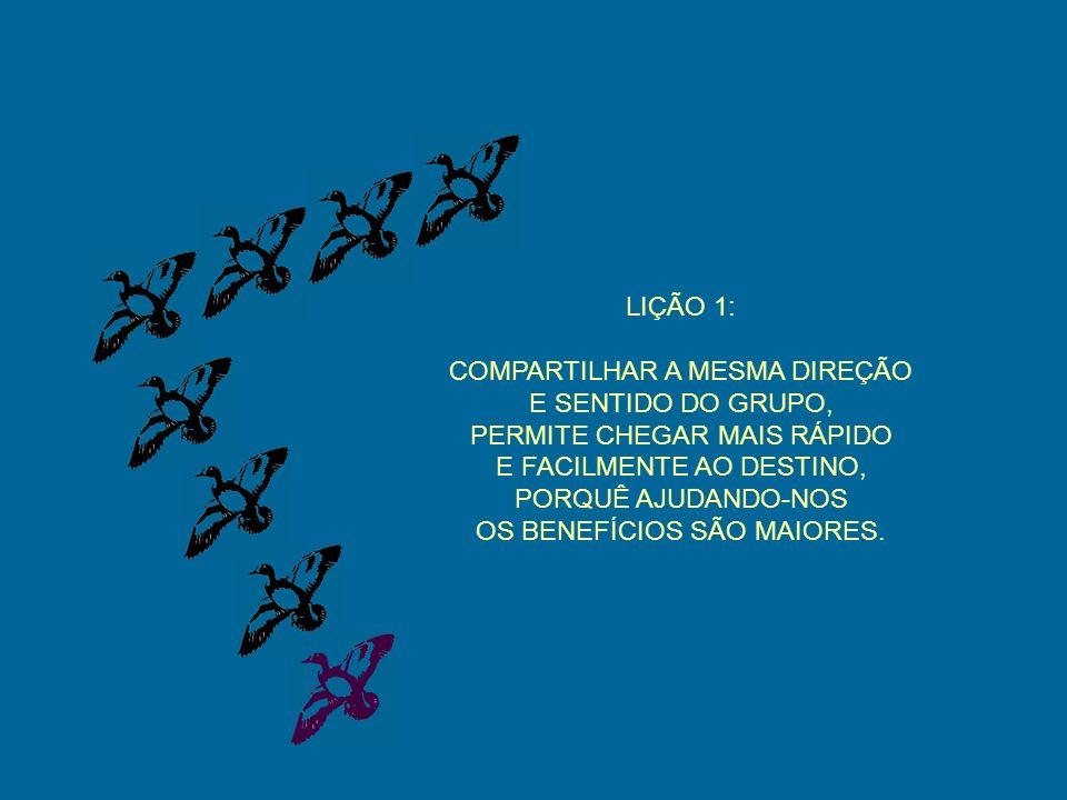 LIÇÃO 1: COMPARTILHAR A MESMA DIREÇÃO E SENTIDO DO GRUPO, PERMITE CHEGAR MAIS RÁPIDO E FACILMENTE AO DESTINO, PORQUÊ AJUDANDO-NOS OS BENEFÍCIOS SÃO MAIORES.