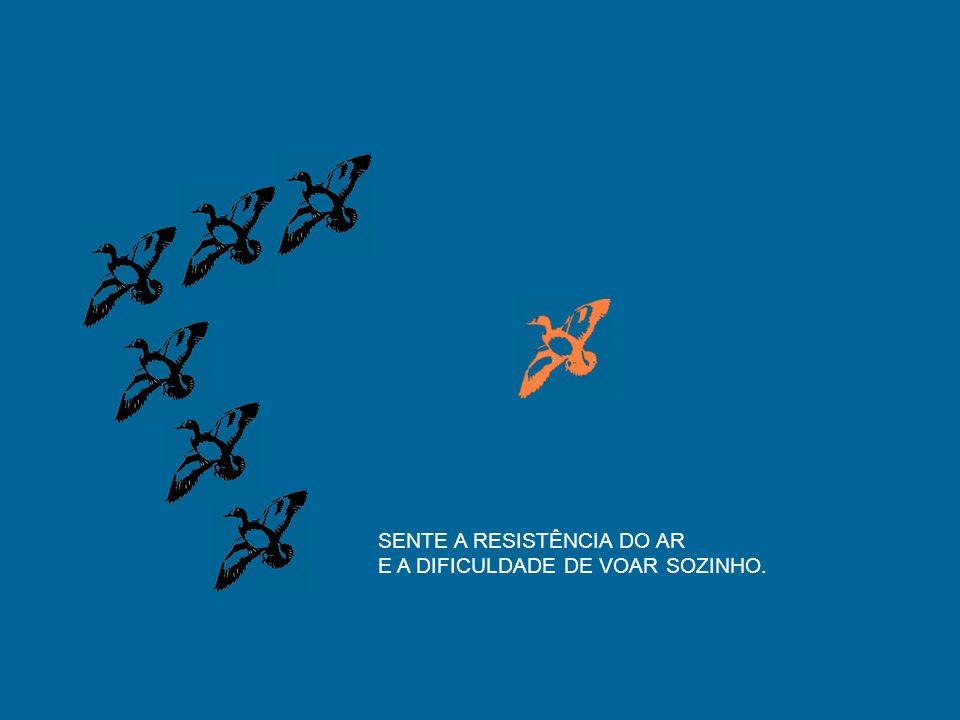 SENTE A RESISTÊNCIA DO AR E A DIFICULDADE DE VOAR SOZINHO.