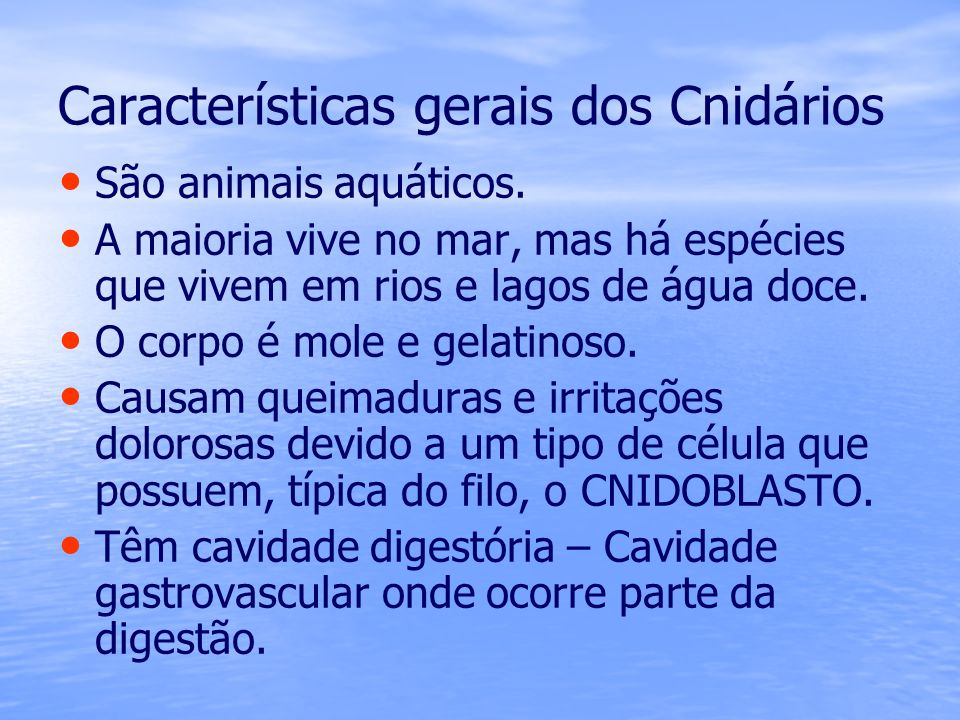 Características gerais dos Cnidários São animais aquáticos. A maioria vive no mar, mas há espécies que vivem em rios e lagos de água doce. O corpo é m