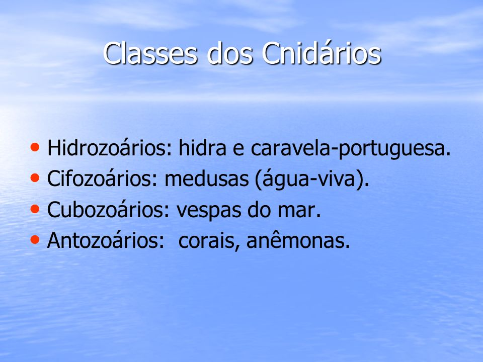 Classes dos Cnidários Hidrozoários: hidra e caravela-portuguesa. Cifozoários: medusas (água-viva). Cubozoários: vespas do mar. Antozoários: corais, an