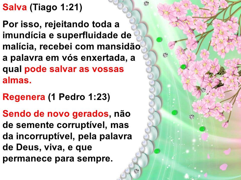 A Semente A semente é a Palavra de Deus. Cada conversão é o resultado do assentamento do evangelho dentro de um coração puro. A palavra gera. (Tiago 1